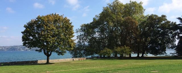 Le lac Léman, vu du jardin de l'OMC